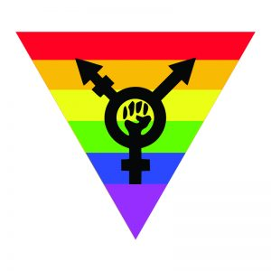 dvd download gay