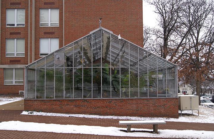 Lindenwood greenhouse
