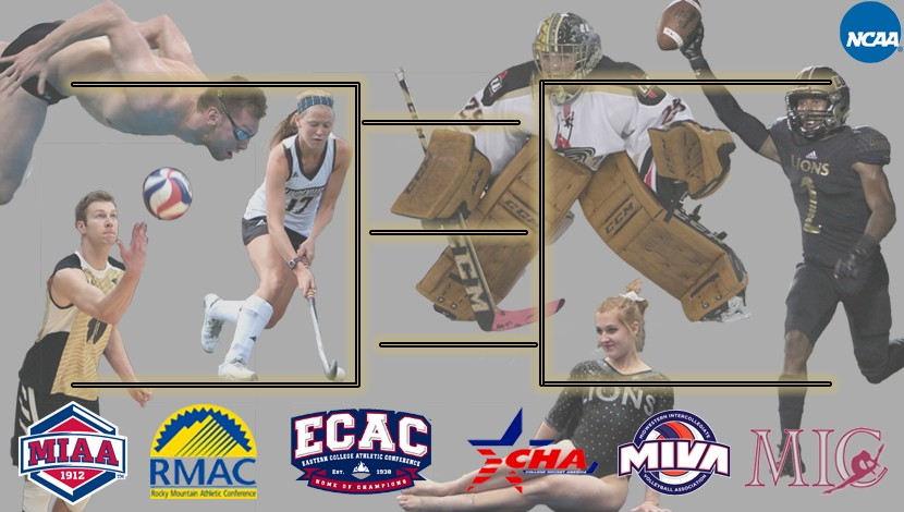 Top+wrestler%2C+top+goalie+battle+for+top+sports+moment+at+Lindenwood