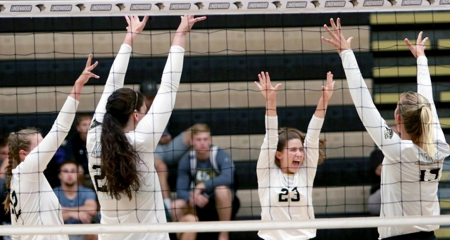 Lindenwood women's volleyball players from left to right: Emily Wylie (#25), Abby Vulich (#23), Alex Bogusz (#15), and Megan Hellwege (#24) celebrate after winning a point.   Photo by Don Adams Jr.