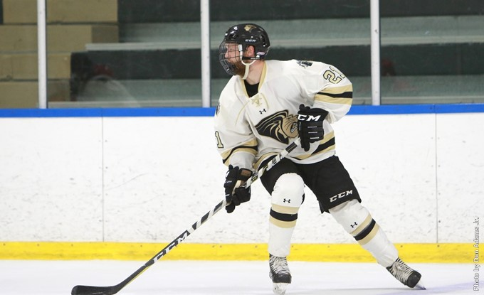 Defenseman+Jake+Townsend+skates+during+a+Lindenwood+hockey+game.+Lindenwood+split+the+series+with+Illinois+1-1.++Photo+by+Don+Adams+Jr.