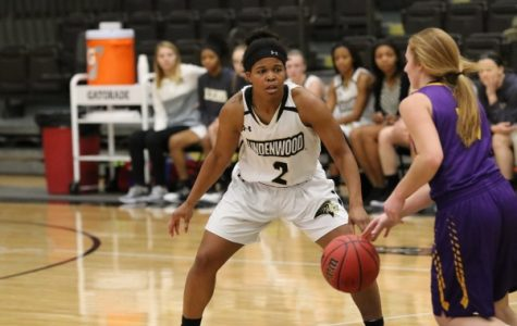 In a file photo from 2017, Lindenwood basketball player Charisse Williams (No.2) plays defense against the St. Louis College of Pharmacy on Nov. 28 in Hyland Arena.  <br> Photo by Walker Van Wey.