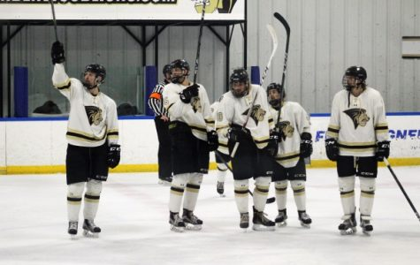 Lindenwood D1 men's hockey wins conference tournament championship