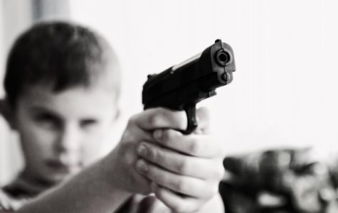 Banning assault rifles won't protect American children from the dangers of the world. <br> Photo from pixaby.com