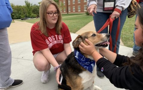 A student playing with a dog at the Cuddle With a Canine event. <br> Photo by Sandy Leegumjorn