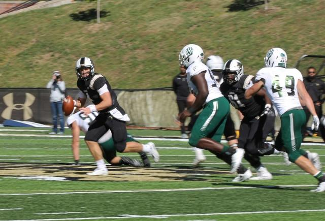During Lindenwood's homecoming game against Northwest Missouri State, Quarterback Cade Brister searches for an open player to pass to.  Photo by Maria Escalona