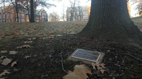 The historic side of campus holds dozens of plaques and bricks commemorating alumni and others. <br> Photo by Kayla Drake