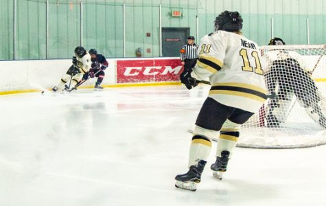 The Lindenwood women's ice hockey team played againt Robert Morris University on Saturday. <br> Photo by Andria Graeler
