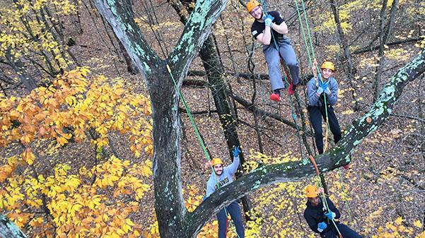 Lindenwood students  in the Recreational Tree Climbing class hang from a white oak tree at the Wyman Center in Eureka, Missouri.  Photo provided by Jon Richard