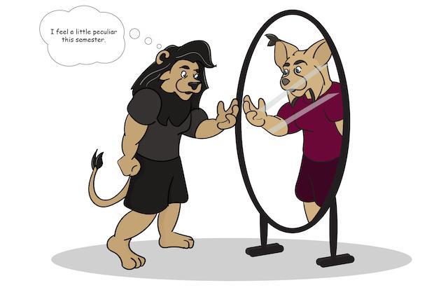 Leo is a Lynx