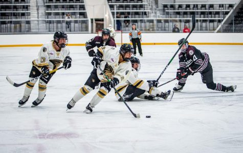 Women's ice hockey drops weekend set against Penn State