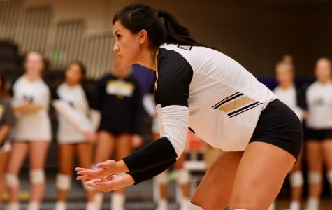 Women's volleyball falls twice during Pink Out weekend