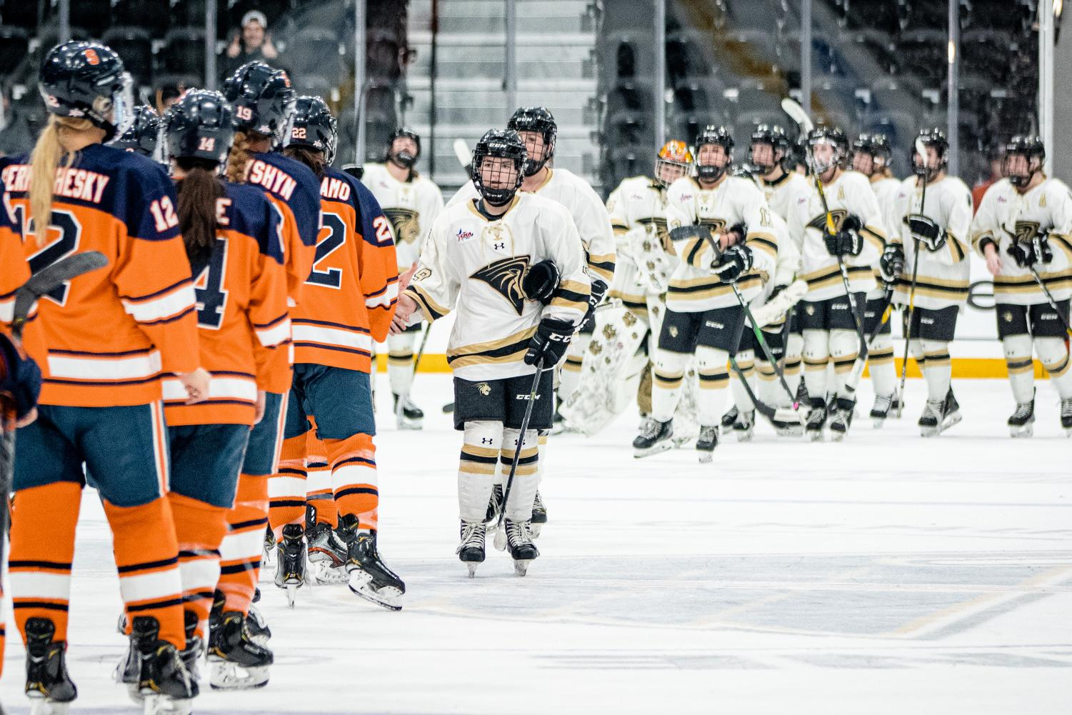 The Lions played Syracuse on Dec. 9 at Centene Community Ice Center. The Lions lost 1-13.
