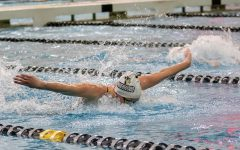 Lion's swimmer performs a butterfly stroke during the Lindenwood Open on Oct. 26, 2019.