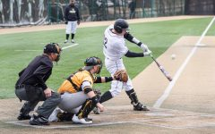 Lindenwood senior Bryce Beckmann takes a swing during the Lions' game Ohio Dominican on Feb. 15., 2020. The Lions swept a doubleheader, 9-0 and 4-0.