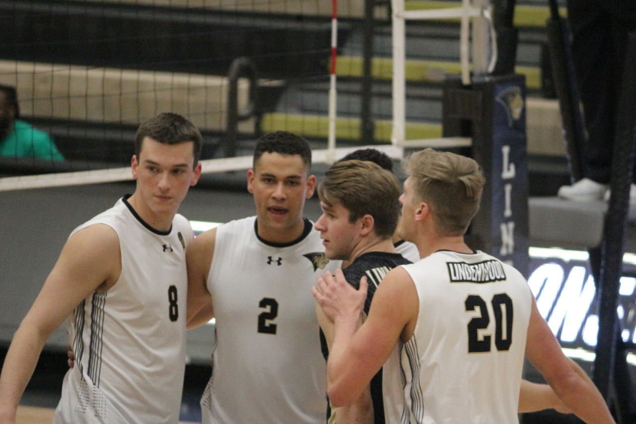 Men's volleyball players huddle up in a game vs Saint Francis on Jan. 17, 2020