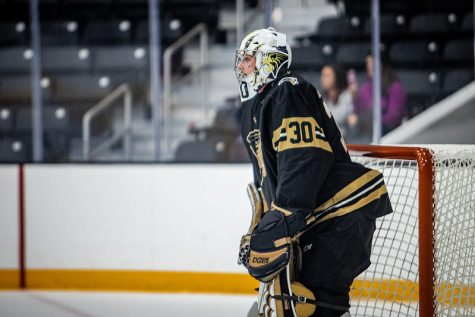 Cooper Seedott (#30) stands in-goal for Lindenwood as they host Illinois on Oct. 20, 2019.