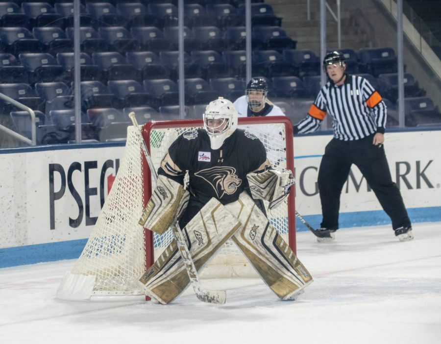 Junior Annika Asplundh defends goal against Penn State University on Jan. 10.